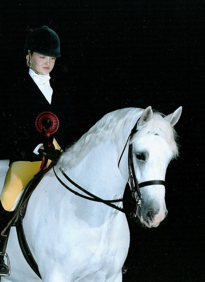 Sparky - UK Horse of the Year 2008 2