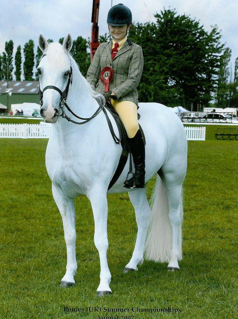 Sparky - UK champion 2